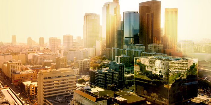Los Angeles Background Check and Information About the City