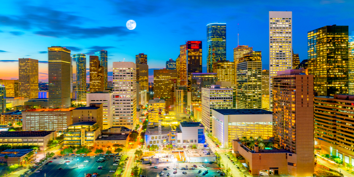 Houston Background Check and Information about Houston