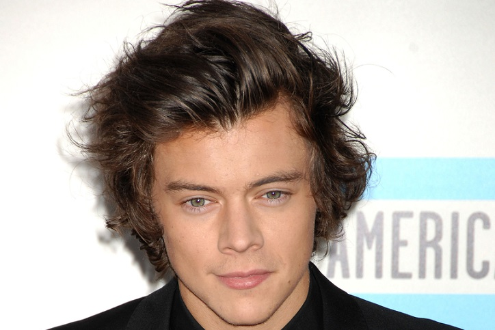 Harry Styles Background Check, Harry Styles Public Records
