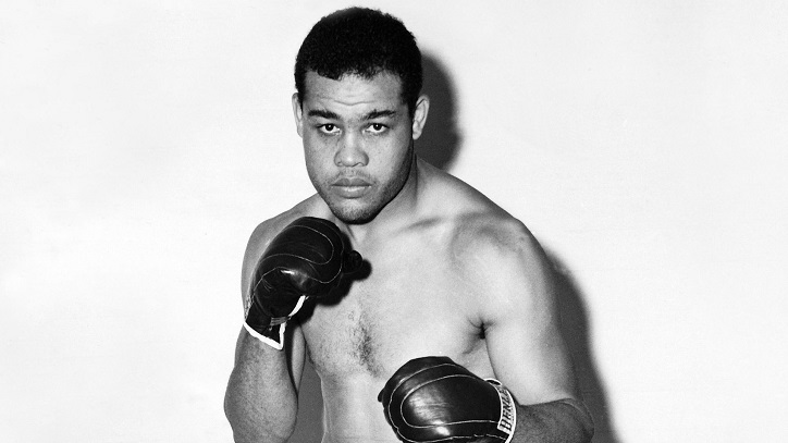 Joe Louis Background Check, Joe Louis Public Records