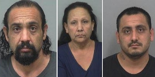 mom sons arrested, trafficking meth