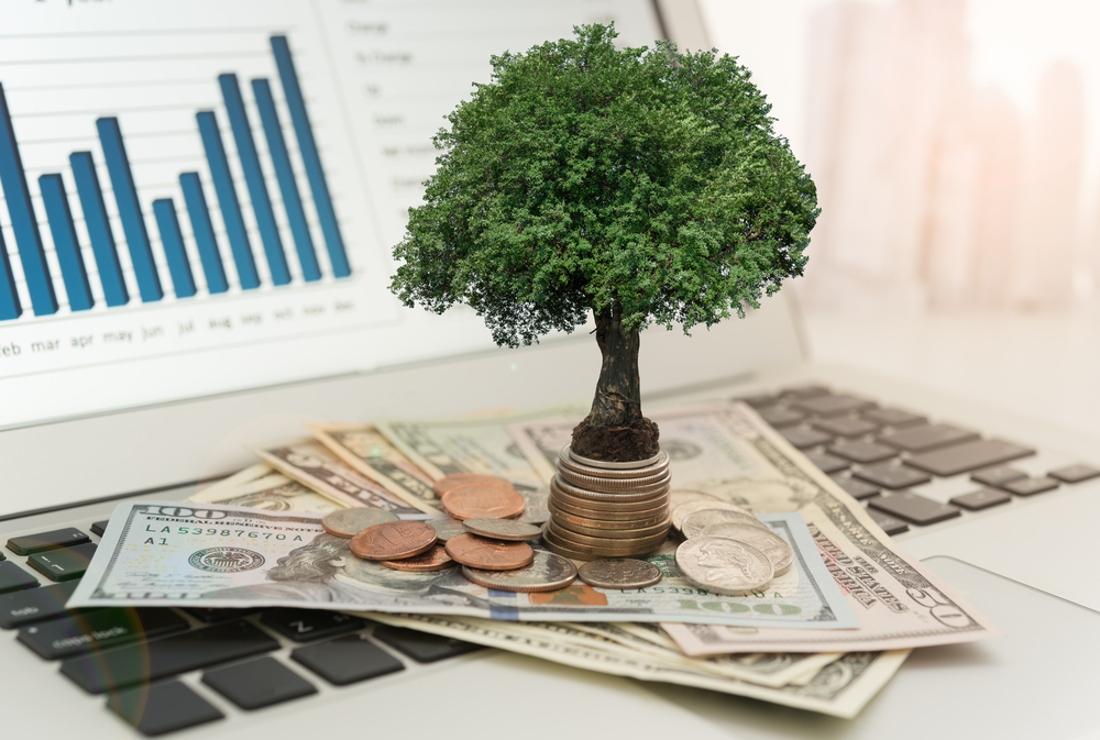 Portfolio Investment, What is Portfolio Investment, What is Portfolio Investments
