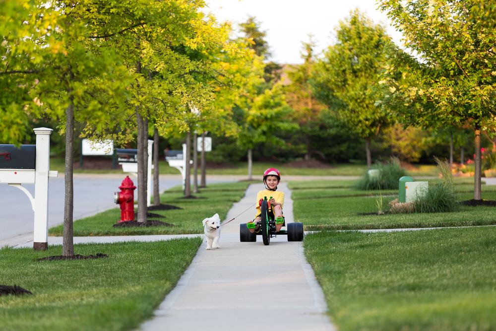 Safe Neighborhoods, Safe Neighborhood