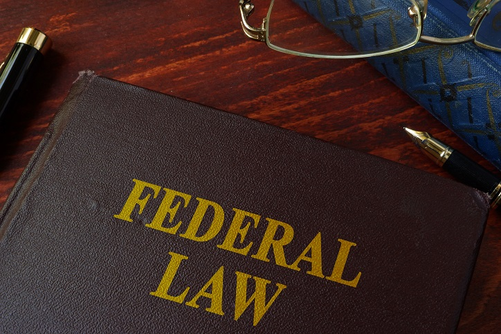 Law, Federal Law, Who Makes Federal Laws