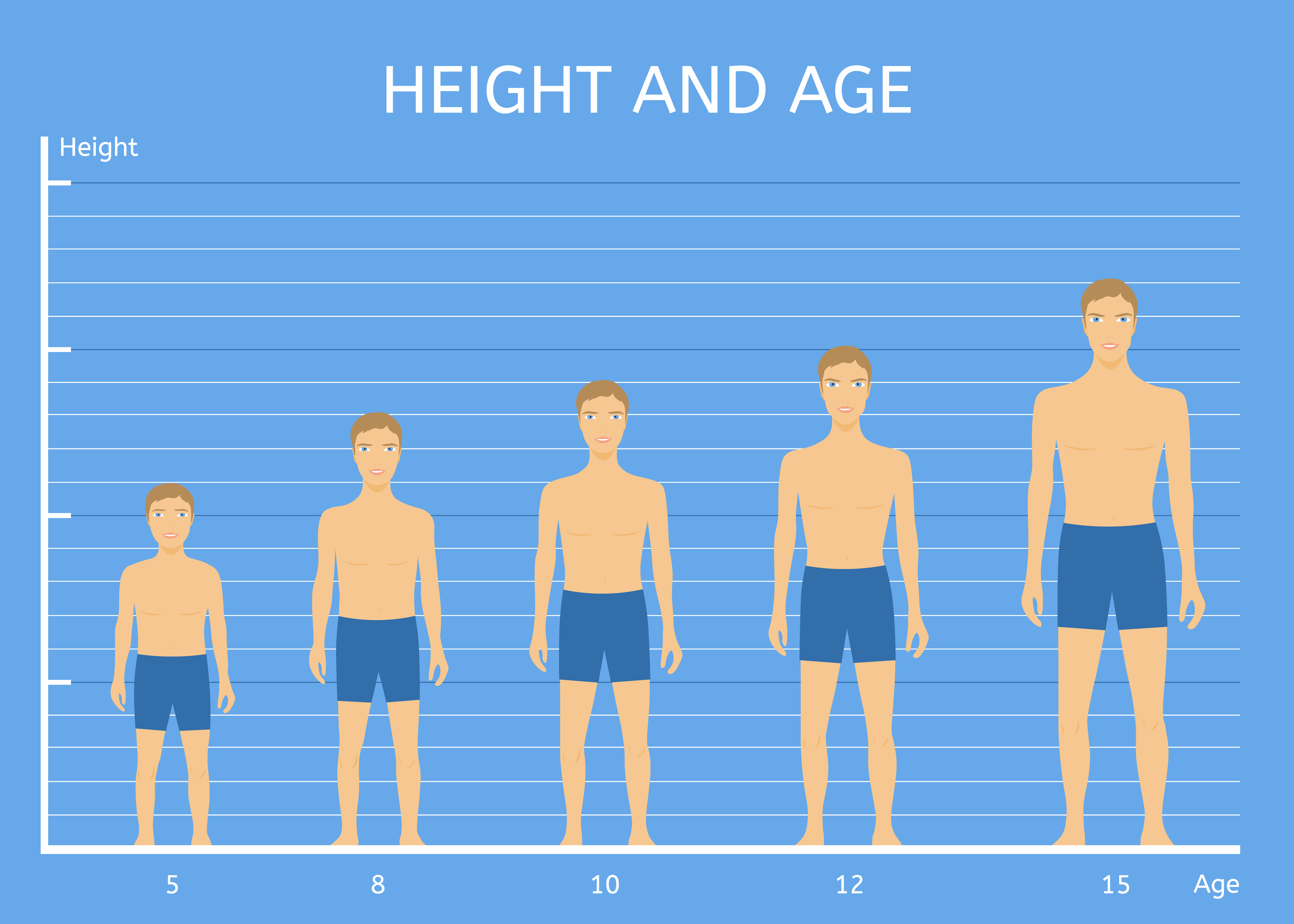 Human Heights, Average Height, Average Heights