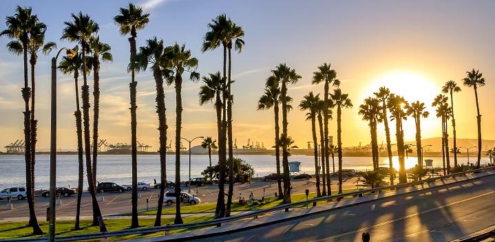 California Marriage License Records Search
