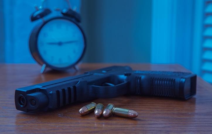 Montana Gun Laws