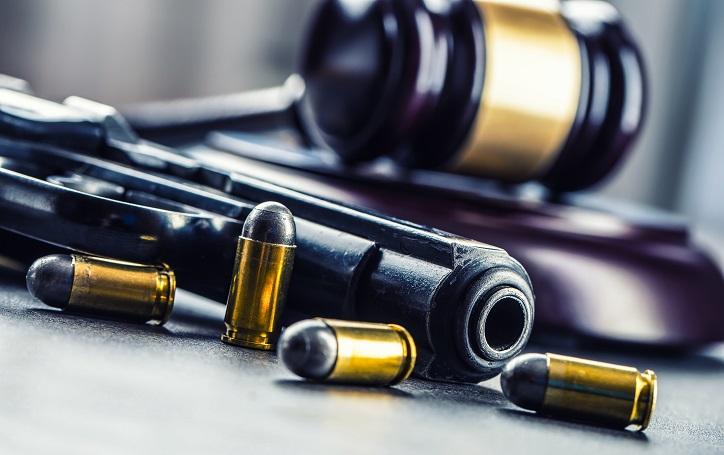 Michigan Gun Laws