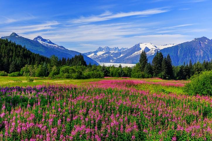 Alaska Income Tax Laws