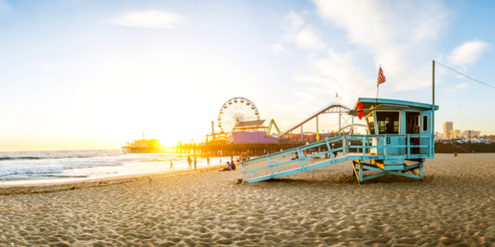 background check Los Angeles - a carnival on the beach