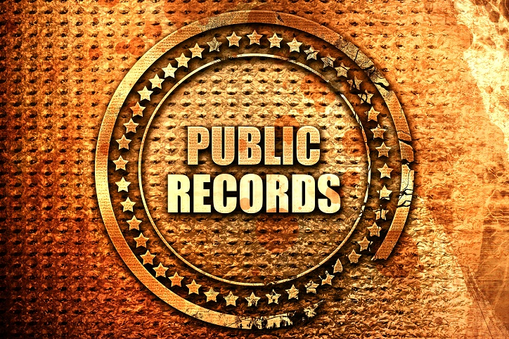 Criminal Public Records