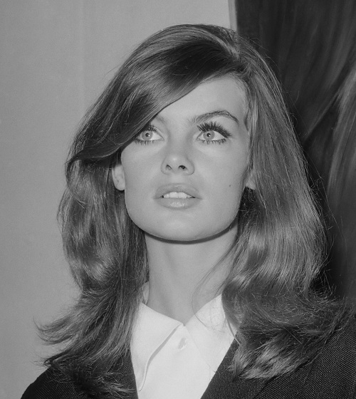 Jean Shrimpton Public Records