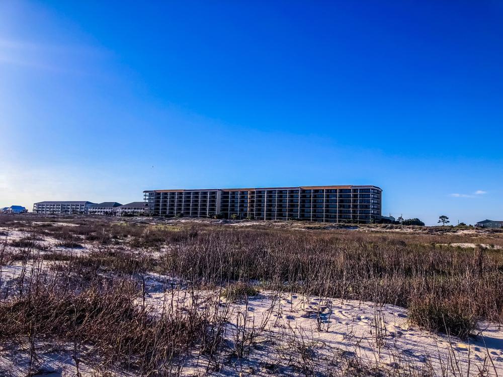 Gulf Shores Arrest Records