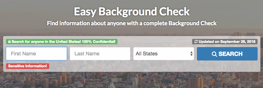 look up background check