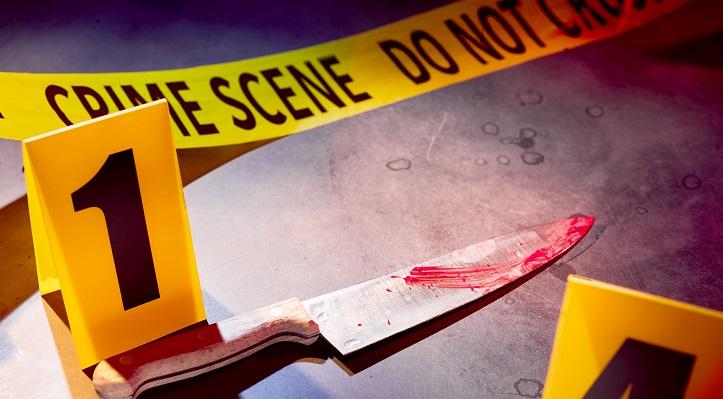Murder Law Maine