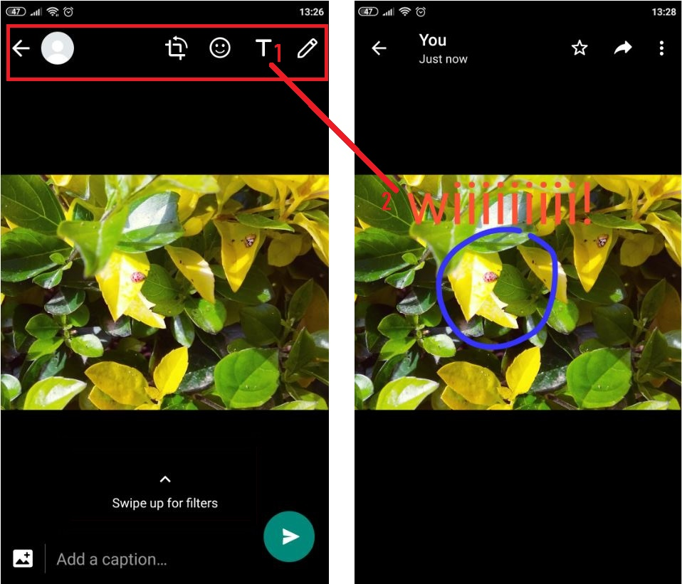 WhatsApp  photo editor