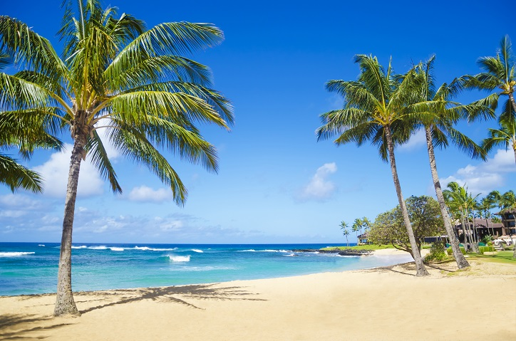 Hawaii City Crime Rate