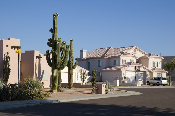 Arizona Public Records