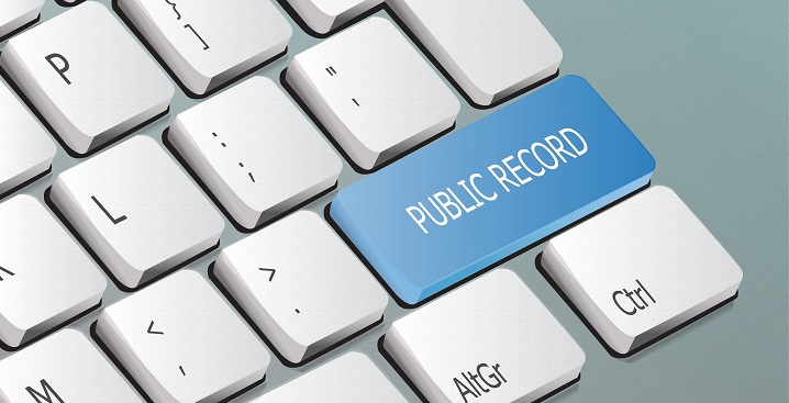 Are Public Records Available Online