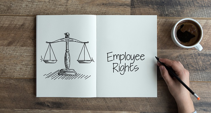 What is an Employment Lawyer