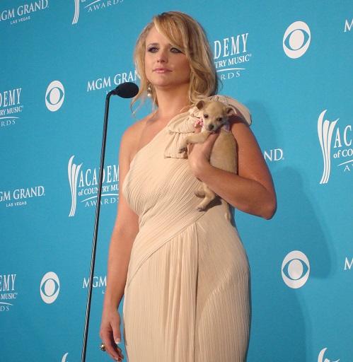 Background Check Miranda Lambert