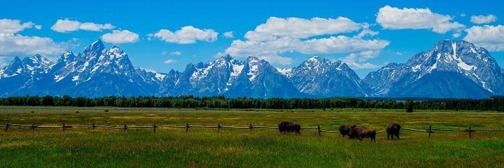 Wyoming Bribery Law