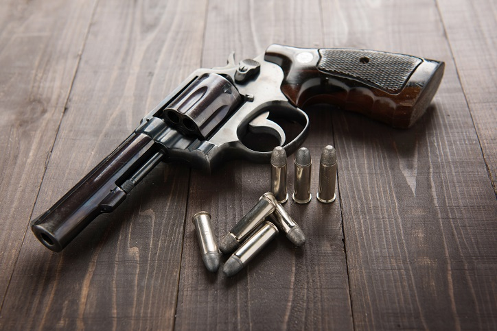 Gun License Michigan State