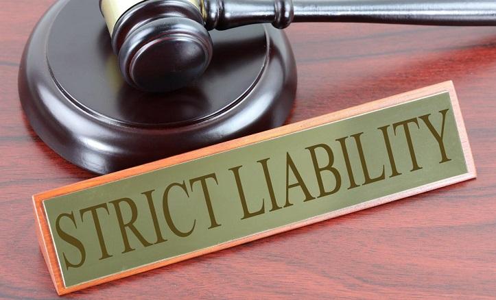 Idaho Seditious Libel Laws
