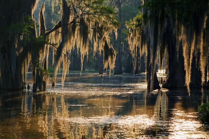 Louisiana Breach of Peace Law