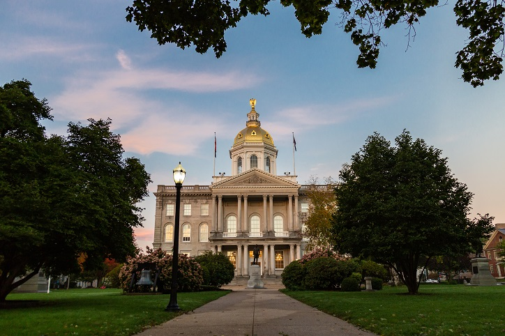 Background Check New Hampshire
