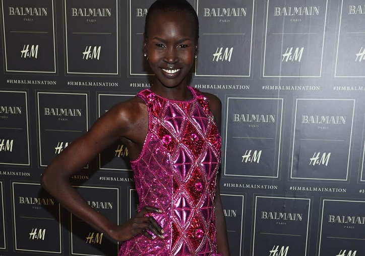 Alek Wek Background Check