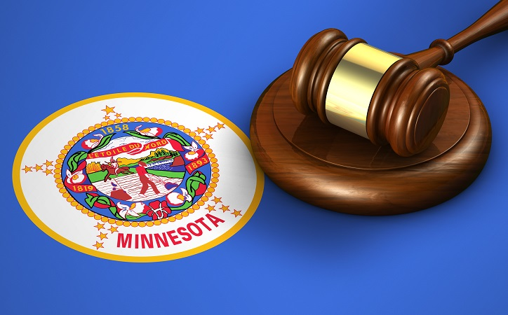 Minnesota Abduction Law