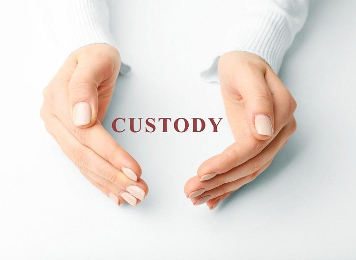 Child Custody Laws in Nevada