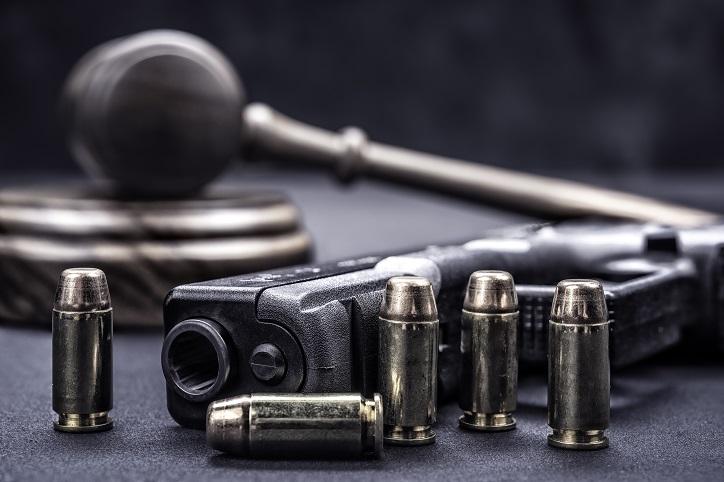 Firearm License