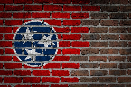 Tennessee Manslaughter Law