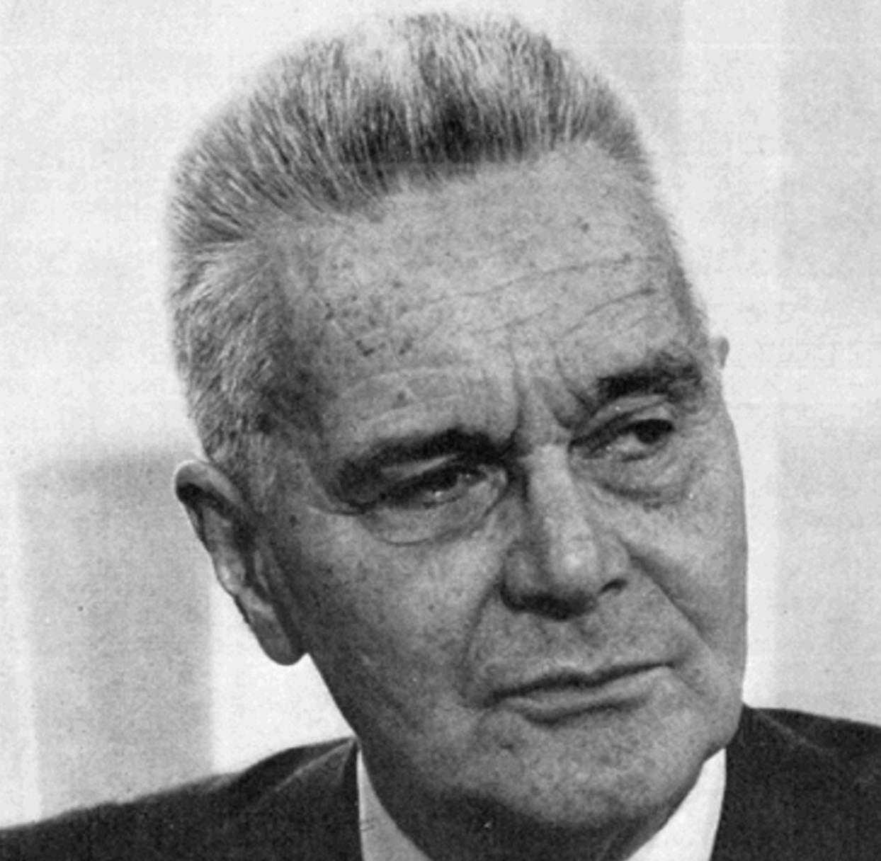 Jan Tinbergen Economist
