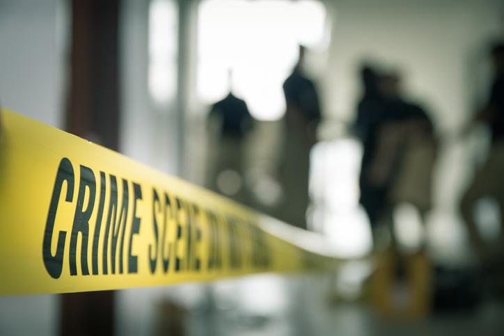 Criminal Reports