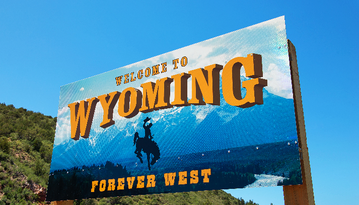 Child Custody Laws Wyoming