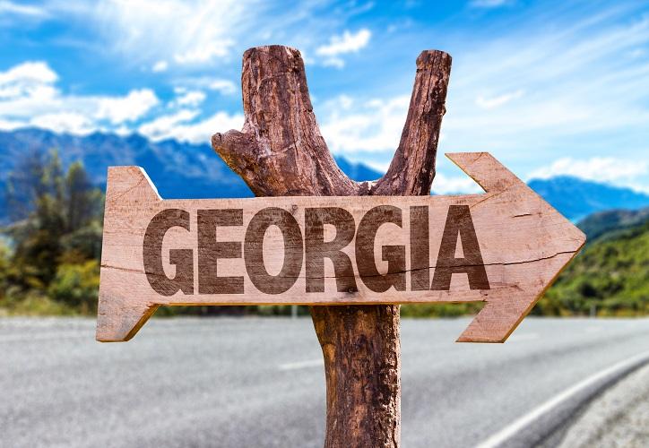 Georgia Warrant Search