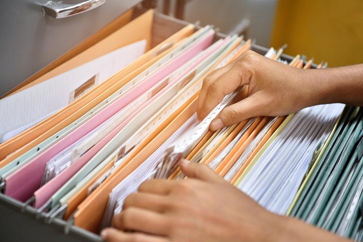 publci records check