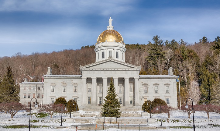 Vermont Shoplifting Laws