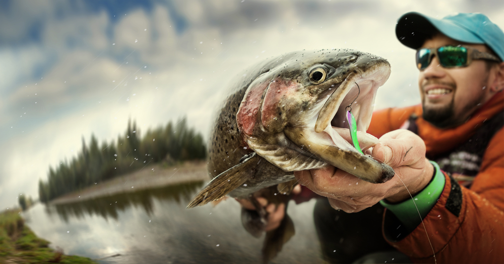 facts salmon