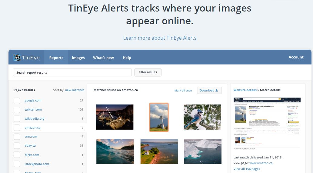 Tineye