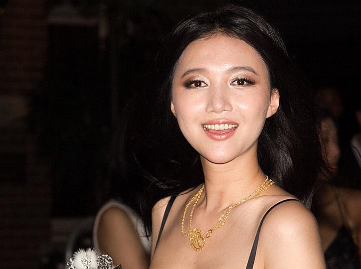 Wenwen Han Public Records