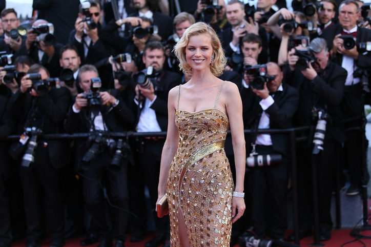 Eva Herzigova Background Check