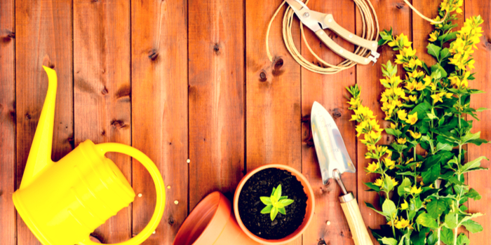 gifts for mothers - a gardening kit