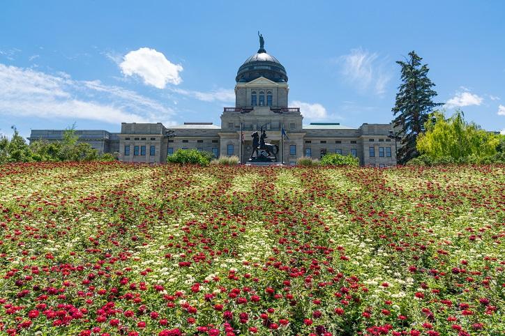 Montana Perjury Law