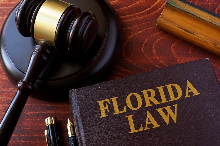 Florida Abduction Law