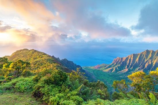 Hawaii Arson Law