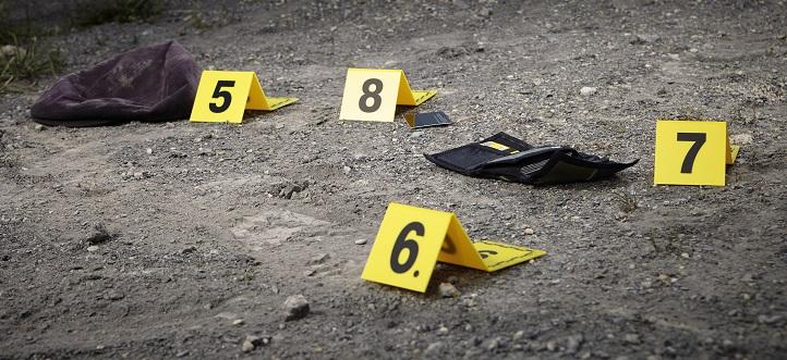 Murder Law Montana